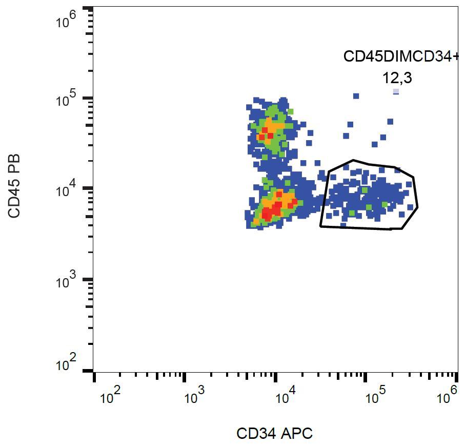 Anti-CD34 Monoclonal Antibody (Clone:581)-APC Conjugated