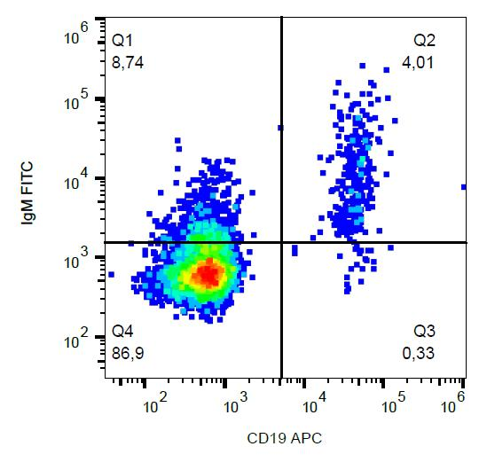 FITC Conjugated Anti-IgM Monoclonal Antibody (Clone:CH2)