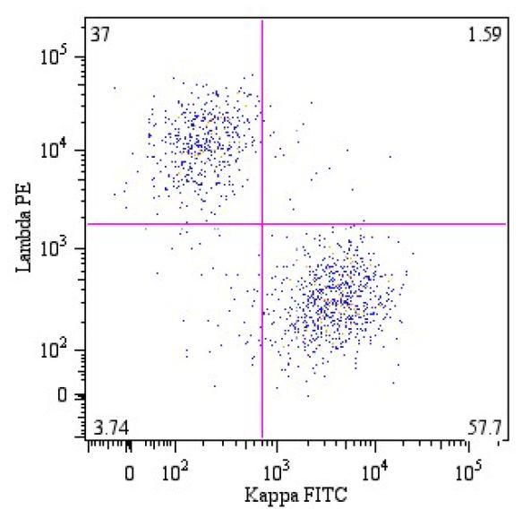 FITC Conjugated Anti-Kappa light chains Monoclonal Antibody (Clone:A8B5)