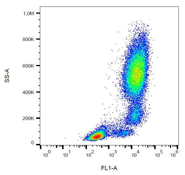Anti-CD11b Monoclonal Antibody (Clone:ICRF44)-FITC Conjugated