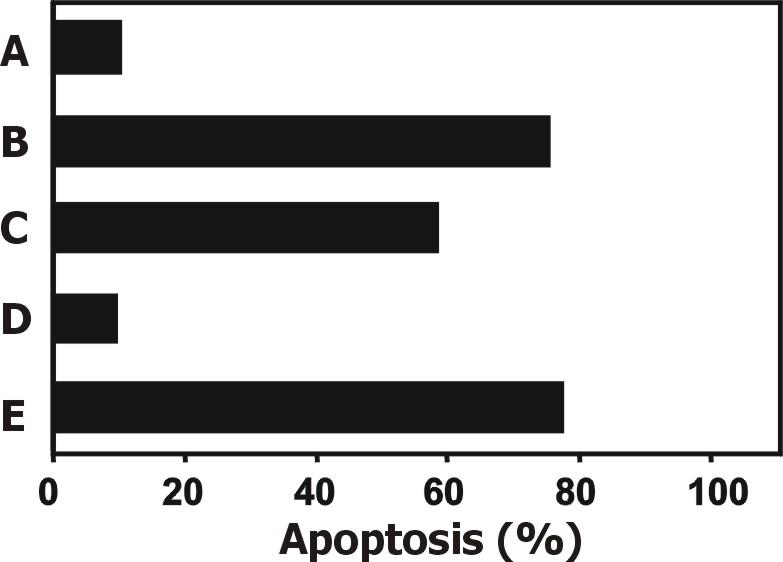 Anti-CD253 / TRAIL Monoclonal Antibody (Clone:2E5)-PE Conjugated