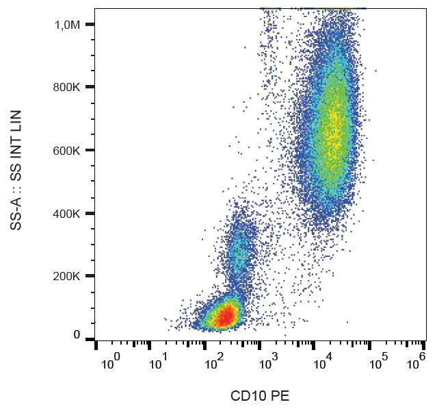 PE Conjugated, Anti-CD10 / CALLA Monoclonal Antibody (Clone:LT10)