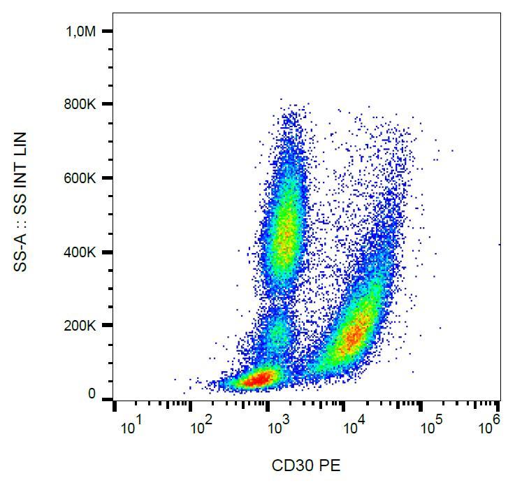 Anti-CD30 / Ki-1 Monoclonal Antibody (Clone:MEM-268)-PE Conjugated