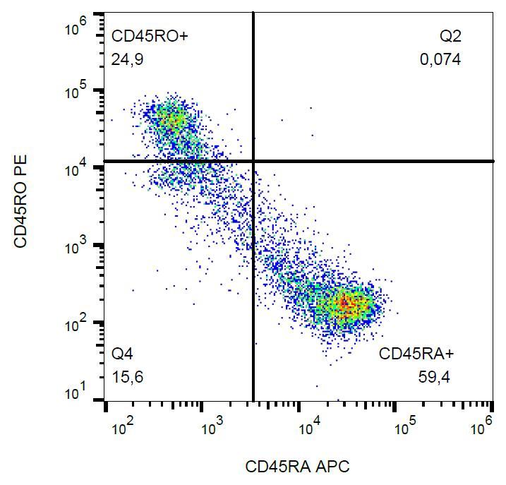 Anti-CD45R0 Monoclonal Antibody (Clone:UCHL1)-PE Conjugated