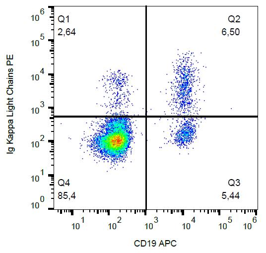 PE Conjugated Anti-Kappa light chains Monoclonal Antibody (Clone:A8B5)