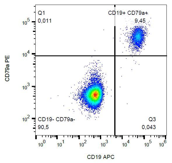 Anti-CD79a Monoclonal Antibody (Clone:HM57)-PE Conjugated