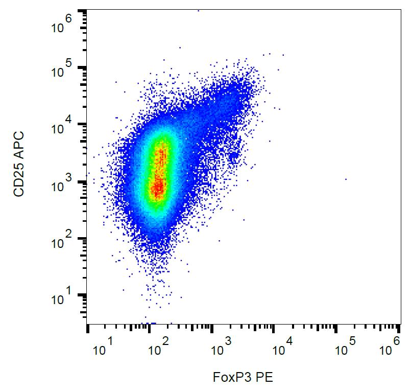 Anti-FoxP3 Monoclonal Antibody (Clone:3G3)-PE Conjugated