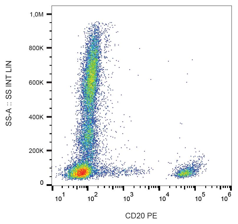 Anti-CD20 Monoclonal Antibody (Clone:2H7)-PE Conjugated