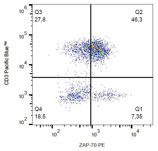 PE Conjugated Anti-ZAP-70 Monoclonal Antibody (Clone:1E7.2)