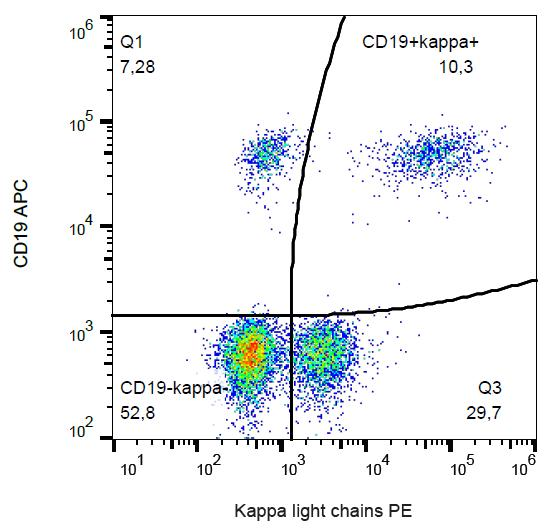 PE Conjugated Anti-Kappa light chains Monoclonal Antibody (Clone:TB28-2)
