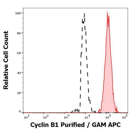 Anti-Cyclin B1 Antibody (Clone : V152)
