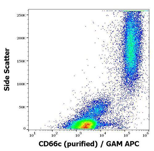 Anti-Human CD66c Antibody (Clone : B6.2)