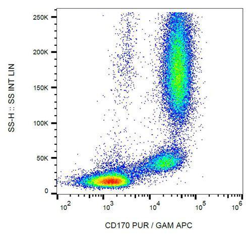 Anti-Human CD170 Antibody (Clone : 1A5)