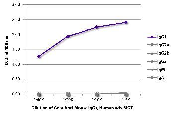 Goat Anti-Mouse IgG1, Human ads-Biotin Conjugated