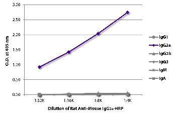 Rat Anti-Mouse IgG2a-HRP Conjugated