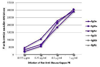 Rat Anti-Mouse Kappa-PE