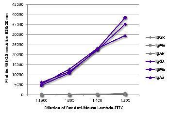 Rat Anti-Mouse Lambda-FITC