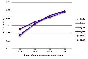 Rat Anti-Mouse Lambda-Biotin Conjugated