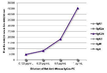 Rat Anti-Mouse IgG2b-PE