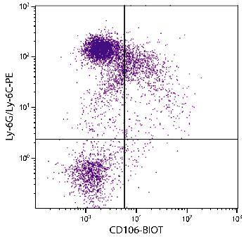 Rat Anti-Mouse CD106-Biotin Conjugated