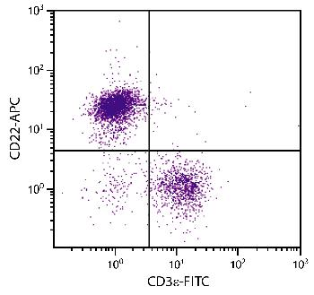 Rat Anti-Mouse CD22-APC