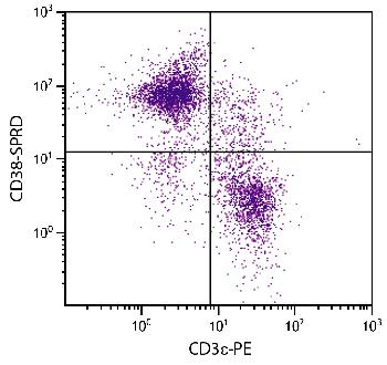 Rat Anti-Mouse CD38-R-PE/CY5