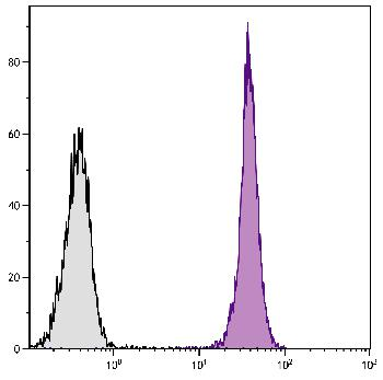 Mouse Anti-Mouse CD45.1-Biotin Conjugated