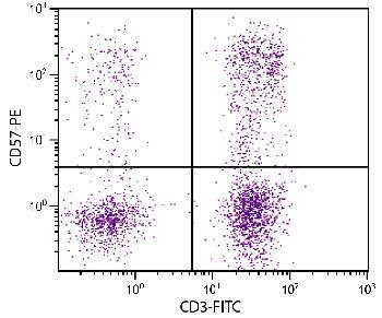 Mouse Anti-Human CD57-PE