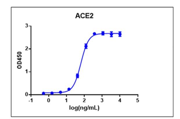 SARS-CoV-2 Spike protein (RBD, C- Term His Tag) (Sf9 cell line)