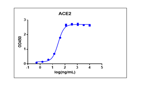 SARS-CoV-2 Spike protein (RBD, His Tag)