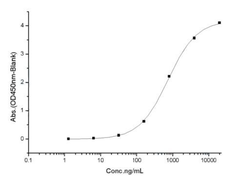 SARS-CoV-2 (2019-nCoV) Spike Protein (S1+S2 ECD, His tag)