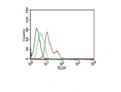 Monoclonal Antibody to Estrogen Receptor, alpha (Marker of Estrogen Dependence)(Clone : ER506)