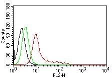 Monoclonal Antibody to Ku (p70/p80) (Nuclear Marker)(Clone : KU729)