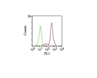 Monoclonal Antibody to CD11c (Dendritic Cell Marker)(Clone : HC1/1)