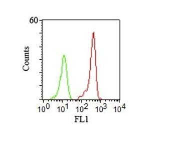 Monoclonal Antibody to CD46 (Membrane Cofactor Protein)(Clone : 122.2)