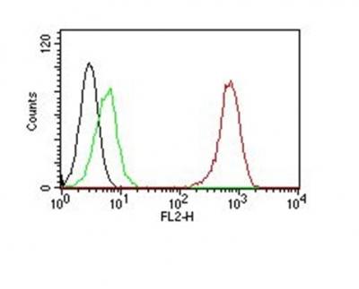 Monoclonal Antibody to CD31 / PECAM-1 (Endothelial Cell Marker)(Clone : SPM122)-PE