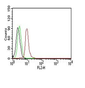 Monoclonal Antibody to Cyclin D1 (G1-Cyclin & Mantle Cell Marker)(Clone : SPM587)-PE