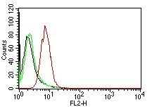 Monoclonal Antibody to Cyclin D1 (G1-Cyclin & Mantle Cell Marker)(Clone : CCND1/809)-PE