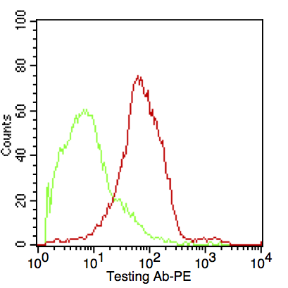 Monoclonal Antibody to CD37 (Peripheral Mature B-Cell Marker)(Clone : IPO-24)