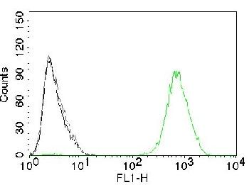 Anti-EGFR (Epidermal Growth Factor Receptor) Monoclonal Antibody(Clone: GFR450)-CF488