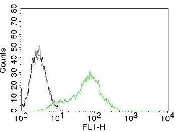 Anti-Ku (p70/p80) (Nuclear Marker) Monoclonal Antibody(Clone: KU729)-CF488