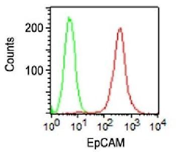 Anti-Ep-CAM / CD326 (Extracellular Domain) (Epithelial Marker) Monoclonal Antibody(Clone: VU-1D9)