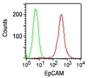 Anti-Ep-CAM / CD326 (Extracellular Domain) (Epithelial Marker) Monoclonal Antibody(Clone: VU-1D9)