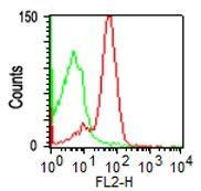 Monoclonal Antibody to CD43 (Clone: DF-T1)