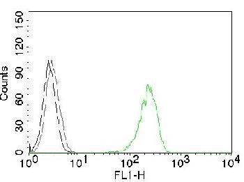 Anti-CD71 / Transferrin Receptor (TFRC) Monoclonal Antibody(Clone: 66IG10)-CF488