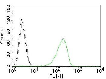 Anti-CD71 / Transferrin Receptor (TFRC) Monoclonal Antibody(Clone: TFRC/1059)