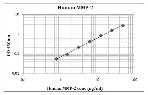 Human MMP-2 (Matrix Metalloproteinase 2) Pre-Coated ELISA Kit