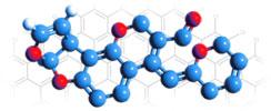 TLR Ligand