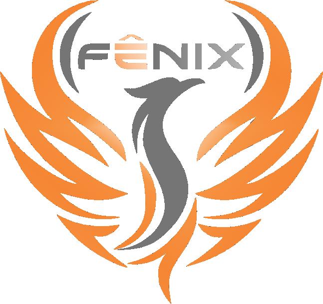 Fenix Solutions
