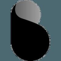 Bottos (BTO) coin